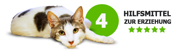 4 Hilfsmittel für Katzenerziehung